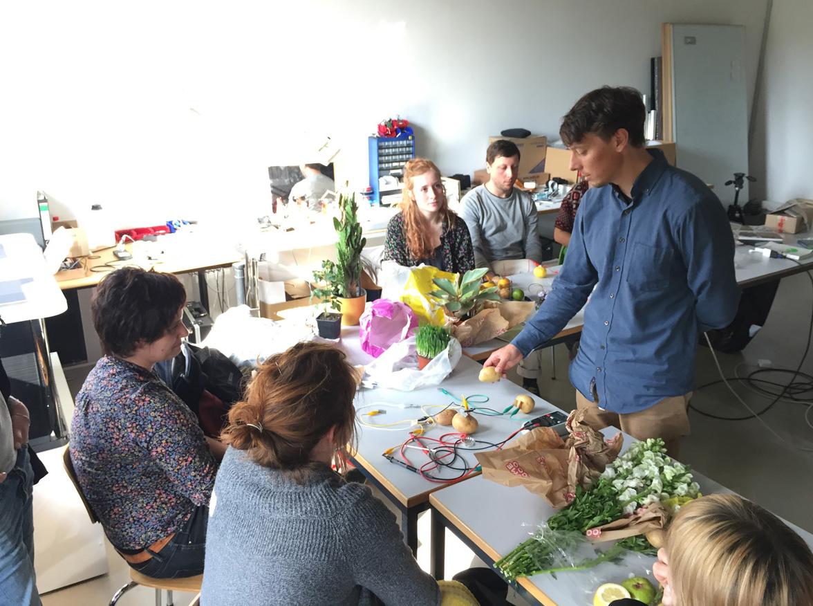 Plant prototyping